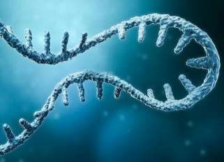Discovery Shows Human Cells can Write RNA Sequences Back into DNA