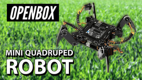 Quadruped Robot DIY Compatible With Arduino IDE | OPENBOX